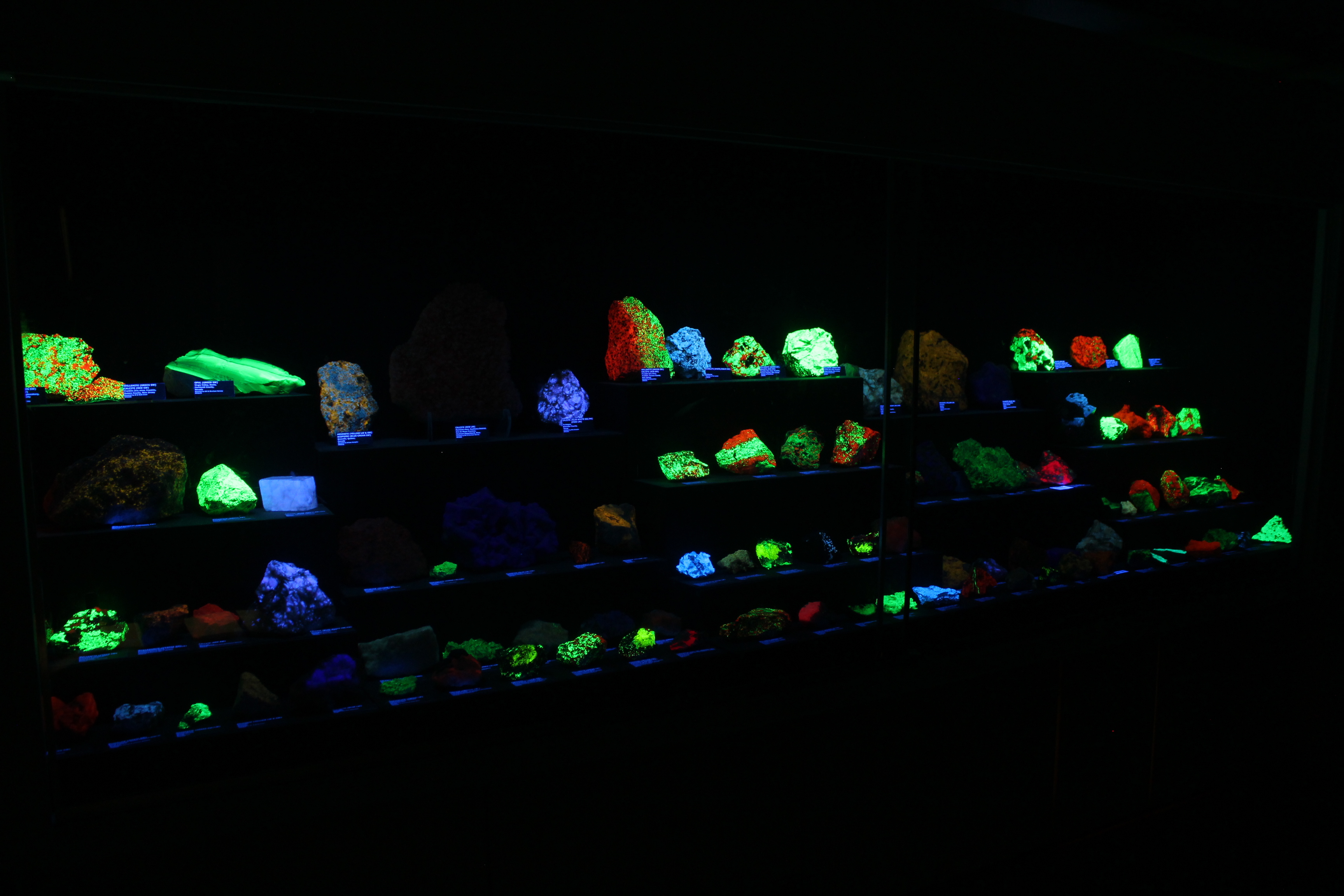 Fluorescent Mineral Display at the Rice Northwest Museum of Rocks and Minerals.