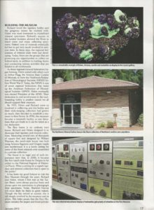 Page 17 from the January 2015 Rock and Gem Magazine article on the Rice NW Museum.