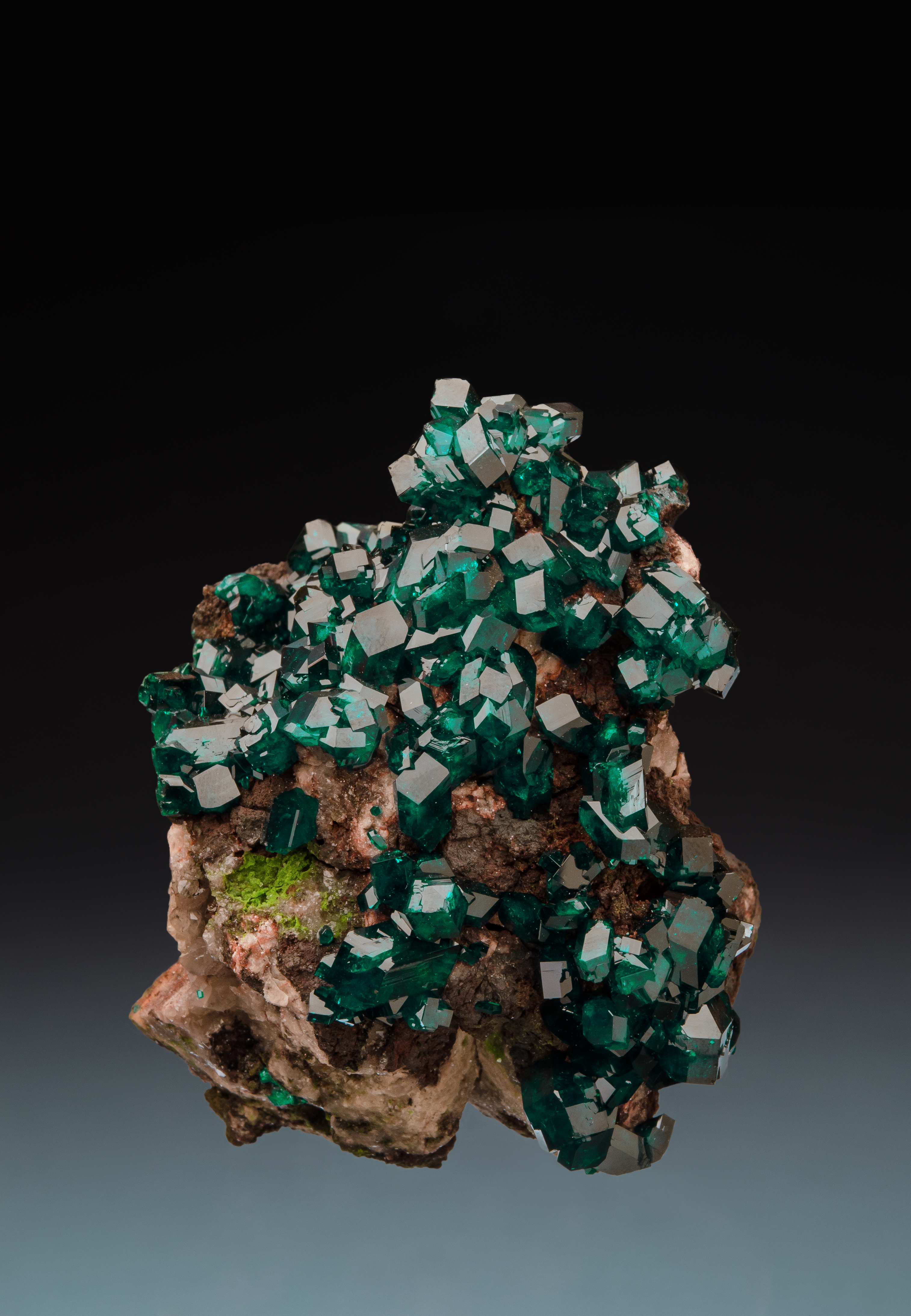 Small teal-green gemmy cubic crystals cover a brown rock.